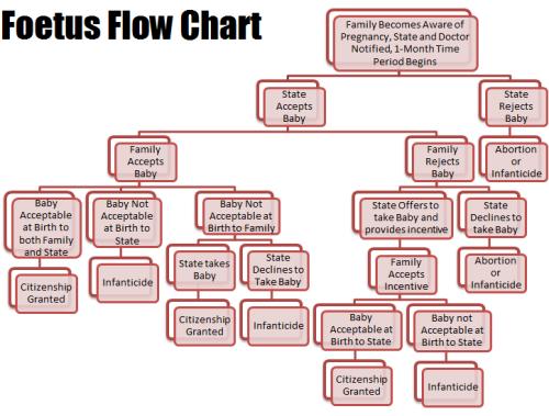 Foetus Flow Chart